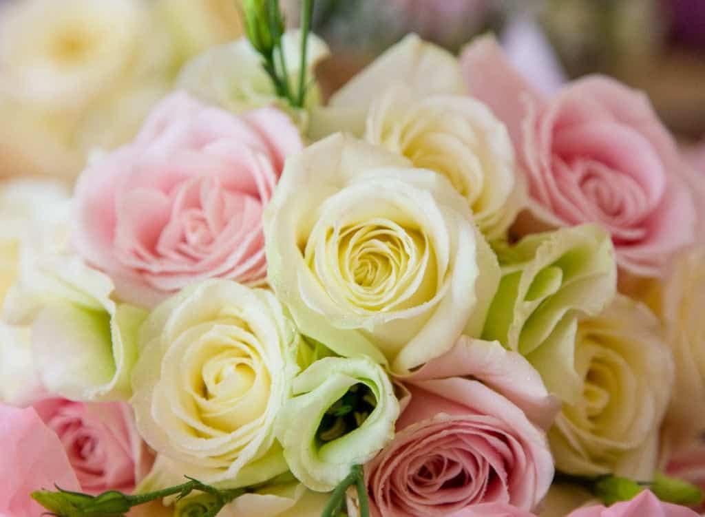 Salisbury Wedding-1